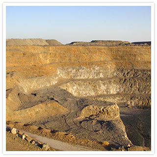 Biological products for the mining industry.